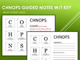 CHNOPS Elements of Life Guided Notes with KEY