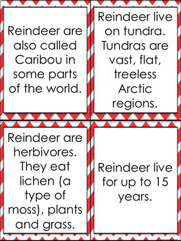 CHRISTMAS UNIT Reindeer and Candy Canes Facts Puzzles Worksheets Printables