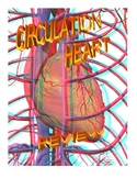 CIRCULATION AND HEART REVIEW