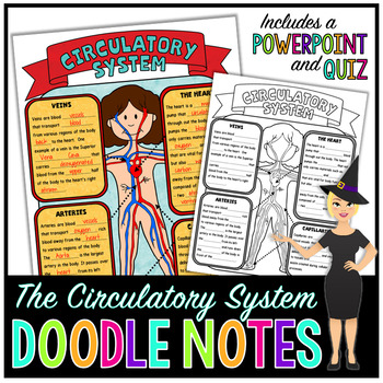 CIRCULATORY SYSTEM SCIENCE DOODLE NOTES, INB, MINI ANCHOR CHART + QUIZ!