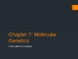 CK-12 Biology Chapter 7: Molecular Genetics PowerPoint