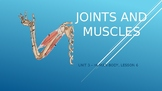 CKLA 3rd Grade Unit 3 - Human Body, Lesson 6 - Joints & Muscles PowerPoint