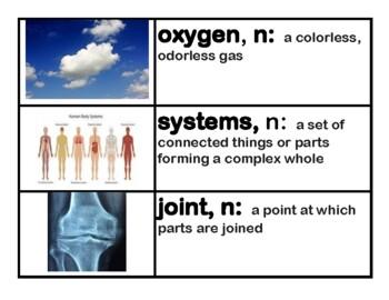 CKLA Core Knowledge 1st grade Vocabulary Set  - Domains 1-11