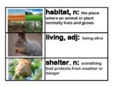 CKLA Core Knowledge Grade 1 Domain 8 Animals and Habitats Vocabulary Cards