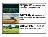 CKLA Core Knowledge Kindergarten Domain 5 Farms Vocabulary Cards