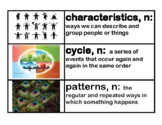 CKLA Core Knowledge Kindergarten Domain 8 Seasons and Weat