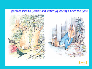 CKLA Domain 1 The Tale of Peter Rabbit