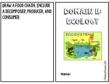 CKLA Domain 11 Ecology