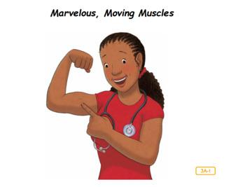 CKLA Domain 2 Marvelous Moving Muscles