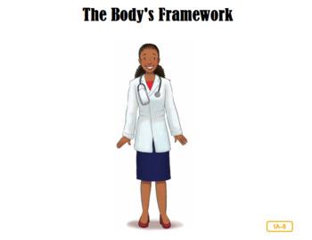 CKLA Domain 2 The Body's Framework