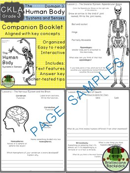 CKLA  Domain 3 Third Grade The Human Body: Systems and Senses Companion Booklet