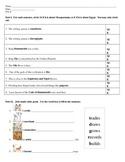 CKLA Domain 4 Alternative Assessment- First Grade