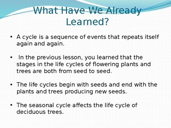 CKLA Domain 6 lesson 6