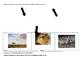 CKLA Domain 8 Animals and Habitats Extensions