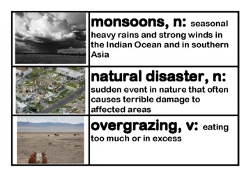 CKLA Core Knowledge Grade 3 Domain 11 Ecology Vocabulary Cards