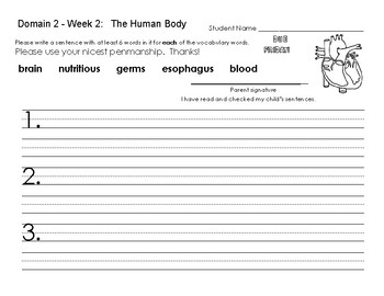 CKLA First Grade Domain 2 Vocabulary Homework Sheets