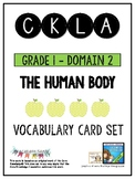 CKLA Grade 1 Domain 2 The Human Body Vocabulary Card Set