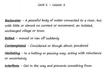 CKLA Grade 3 Unit 1 Vocabulary Entire Unit with Google Form/Print assessment