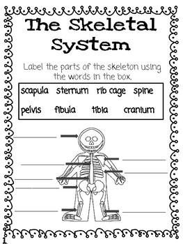 CKLA Grade 3 Unit 3 Human Body Reading Journal
