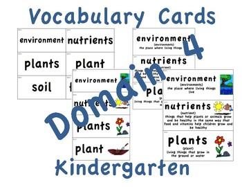 CKLA Kindergarten Domain 4 Vocabulary Cards