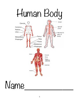CKLA, L/L, Unit 3 Human Body Packet