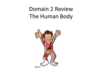 CKLA Listen & Learn 1st Grade Domain 1-11 Review Powerpoint bundle!