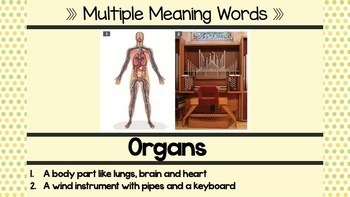 CKLA Listening and Learning PowerPoint: The Human Body First Grade