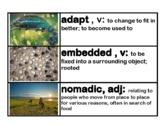 CKLA Native Americans: Regions and Cultures Vocabulary Car