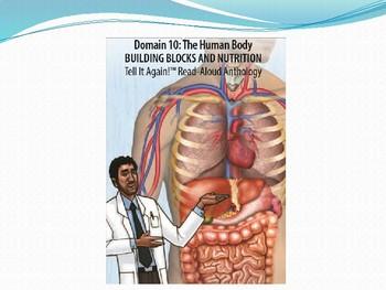 CKLA unit 10  lesson 1 Human body