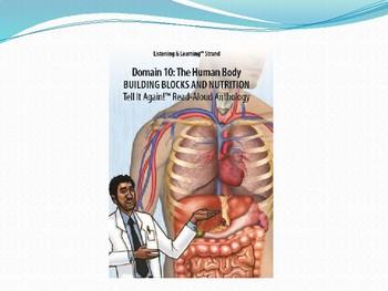 CKLA unit 10 lesson 2 human Body