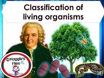 CLASSIFICATION FUNDAMENTALS- TAXONOMY