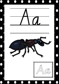 ALPHABET POSTERS / SIGNS FOR CLASSROOM DISPLAY
