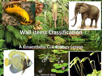 CLIL Classification Lesson: Vertebrates, Invertebrates and Plants