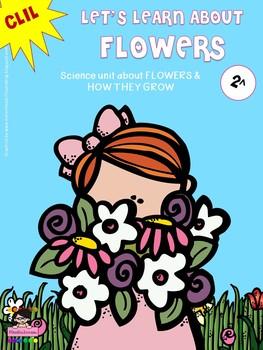 CLIL - FLOWERS