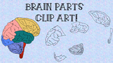 CLIP ART - BRAIN PARTS