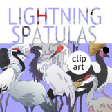CLIP ART PACK! Crane Species