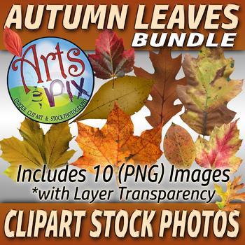 "CLIPART Stock Photos - ""Autumn Leaves"" Bundle - Clipart - Photographs - Fall"