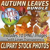 "CLIPART Stock Photos - ""Autumn Leaves"" Bundle - Clipart -"