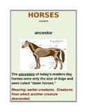 "CLOSE READING ~ ""HORSES"" ~ Journeys Common Core Trade Book"