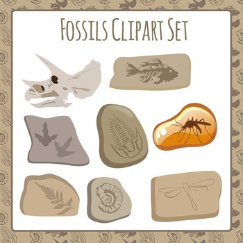 Fossils Clip Art Pack for Commercial Use
