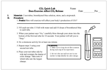 CO2 Quick Lab