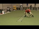 COACHING: Baseball Strength and Conditioning Workout Progr
