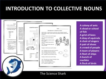 Introduction to Collective Nouns