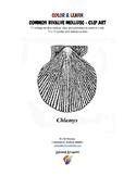 COLOR & LEARN - BIVALVE MOLLUSCS
