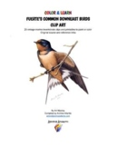 COLOR & LEARN -  Fuerte's Common Downeast Songbirds Clip Art