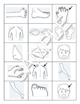 Parts of the Body / Les parties du corps FRENCH Workbook & Games Package