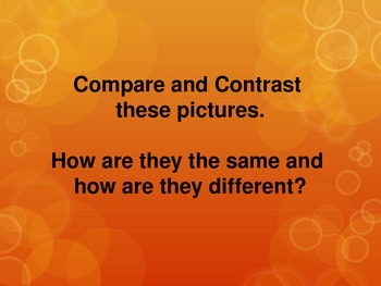 COMPARE AND CONTRAST PICTURES
