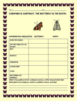 COMPARE & CONTRAST: THE BUTTERFLY & THE MOTH