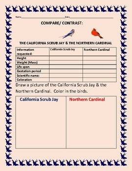 COMPARE/CONTRAST: THE CALIFORNIA SCRUB JAY & THE NORTHERN CARDINAL