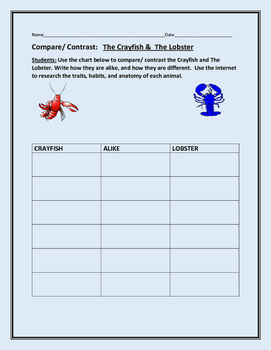 COMPARE/ CONTRAST: THE CRAYFISH & THE LOBSTER